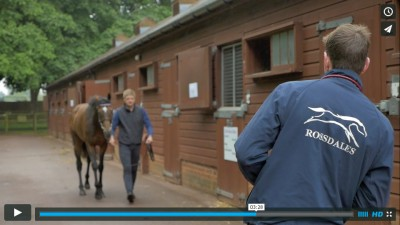 Rossdales Equine Vets